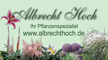 Anzeige - Albrecht Hoch